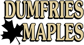 Dumfries Logo